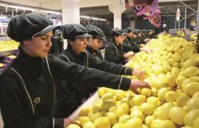 Lemon Packaging and Lemon selection Mersin Turkey
